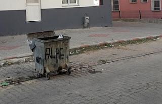 Cani anne çocuğunu çöpe attı
