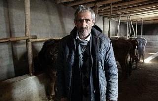 Bataklığa saplanan ineğin sahibi Mehmet Emin Amca...