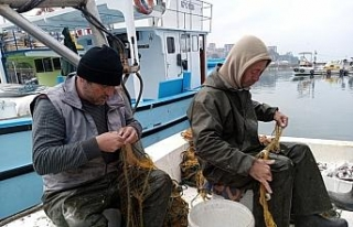 Zonguldaklı balıkçılar 100 kilogram mezgitle limana...