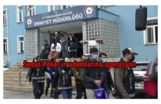 4 ilde Sedat Peker suç örgütüne operasyon: 25...