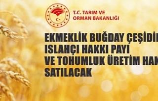 Antalya Batı Akdeniz Tarımsal Araştırma Enstitüsü...