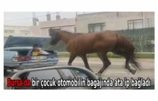 Bursa'da bir çocuk otomobilin bagajında ata...