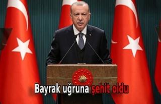 Cumhurbaşkanı Erdoğan'dan 'Aybüke Yalçın'...
