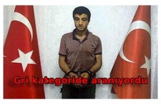 MİT ve jandarmadan PKK/KCK operasyonu; terörist...
