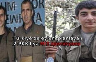 Türkiye'de eylem planlayan 2 PKK'lıya MİT...