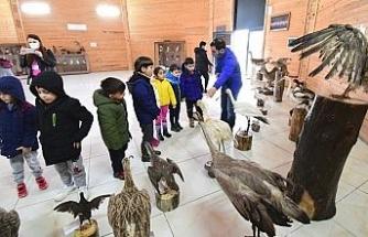 Minik öğrenciler kuşları inceledi