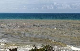 Yağmurun ardından Karadeniz iki renk oldu