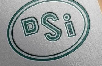 DSİ'ye Mali Yönetim Uzmanı alınacak