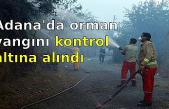 Adana'nın Kozan ilçesinde çıkan orman yangını kontrol altına alındı