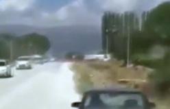 Muğla'da köpeğe inanılmaz işkence