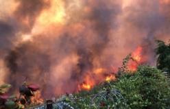 Bursa Mudanya'daki yangın kontrol altına alındı! İşte yangının ardında bıraktığı görüntüler