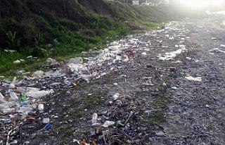 Mudanya sahili içini kustu, neler çıktı neler