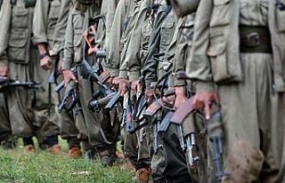 8 terörist Afrin'de yakalandı Hatay'da...