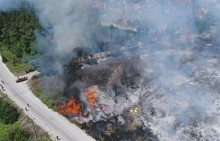 Bursa Mudanya'da yangının olduğu bölgedeki...