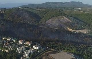 Mudanya'daki yangının ardından kalan acı...