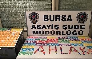 Bursa'da tombala operasyonu