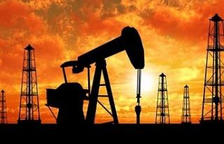 OPEC kararını verdi