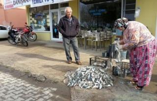 İznik Gölü'nde av yasağı öncesi balık bereketi