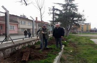 Yenişehir'de veliler okul bahçesini ağaçlandırdı