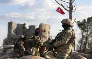 Afrin'de 56. gün... Sayı 3530