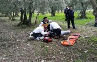 İznik zeytinlik cinayetinde tutuklu sayısı 3'e...