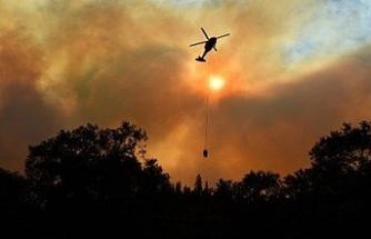 ABD'deki yangınlarda ölü sayısı 76'ya çıktı