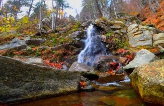 Uludağ'ın eteklerinde sonbahar bir başka güzel!